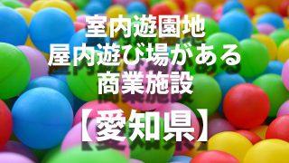 愛知県 室内遊戯施設